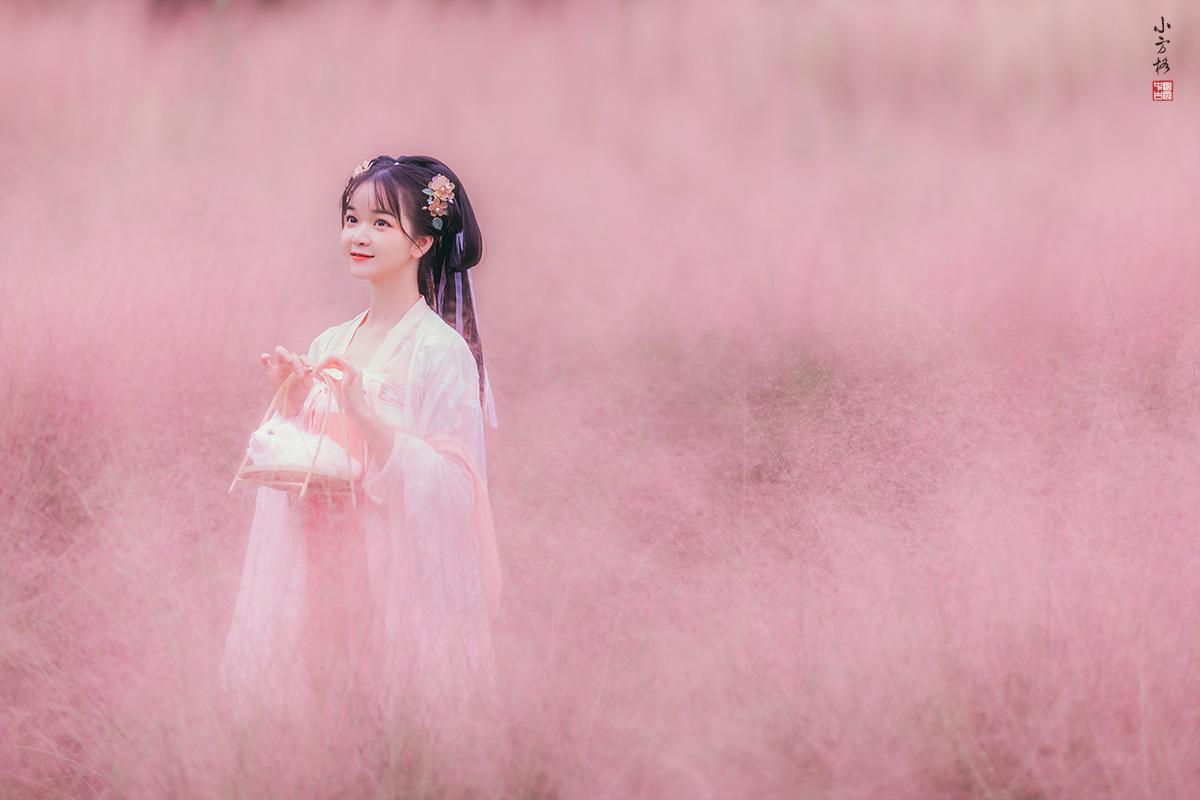 粉色的草。